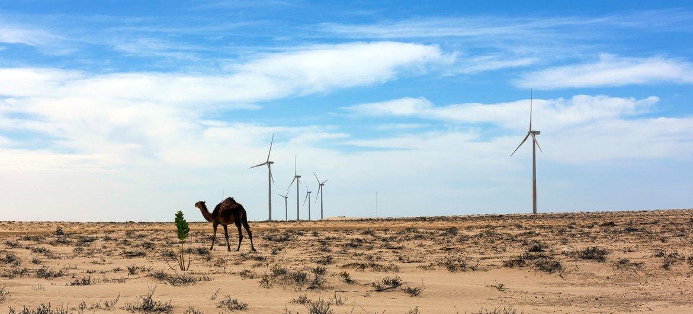 Turbinas de energia solar em Nouakchott, na Mauritânia