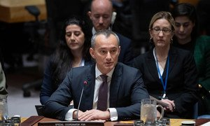 Nickolay Mladenov, UN Special Coordinator for the Middle East Peace Process and Personal Representative of the Secretary-General to the Palestine Liberation Organization and the Palestinian Authority, briefs Security Council members.