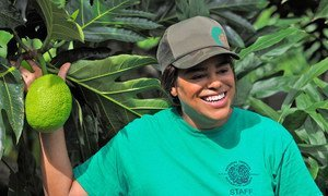 Noel Dickinson is a research technician  for the Breadfruit Institute at Hawaii's National Tropical Botanical Garden.