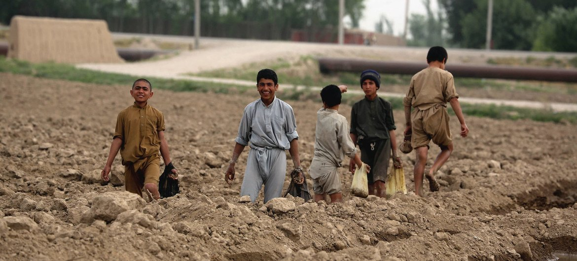 Child labour gains since 2000 could be wiped out by COVID-19, UN warns