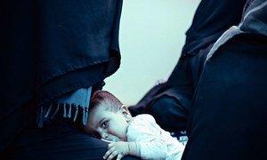 Тысячи людей, большинство которых составляют женщины и дети, содержатся в бесчеловечных условиях в переполненных лагерях на севере Сирии и в Ираке