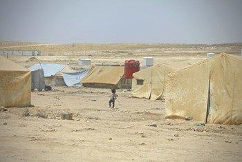 В лагере Аль-Хол на северо-востоке Сирии пристанище нашли более 70 тысяч человек - в основном женщины и дети