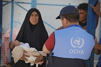 OCHA staff assist a woman taking her four-day-old grandson to a health clinic in Al Hol camp, Syria. (16 June 2019)