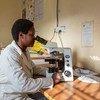Gracias a la instalación de paneles solares, esta científica zimbabuense no tiene que detener sus investigaciones debido a los cortes de luz.