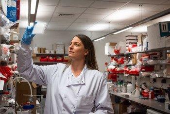 Des scientifiques de l'Université d'Oxford s'efforcent de développer un vaccin contre le coronavirus.