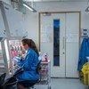Десятки экспериментальных вакцин от COVID-19 проходят испытания. На фото: лаборатория Оксфордского университета, Великобритания.