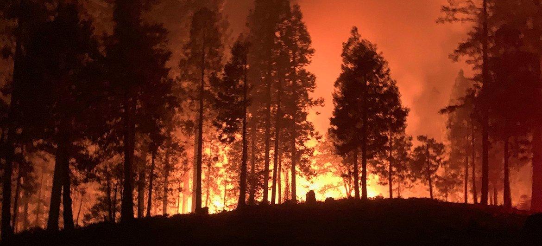 Incêndio florestal na Califórnia em 2020.