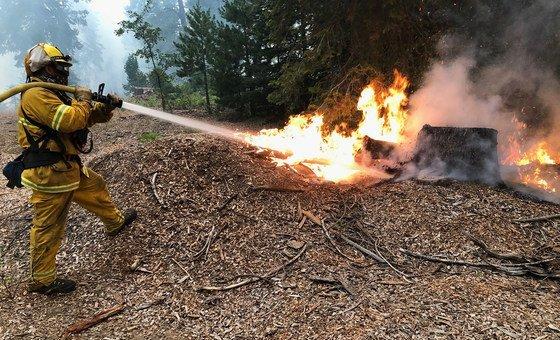 Bombeiros na Califórnia e em outras partes da costa oeste dos Estados Unidos tentaram conter incêndios florestais.