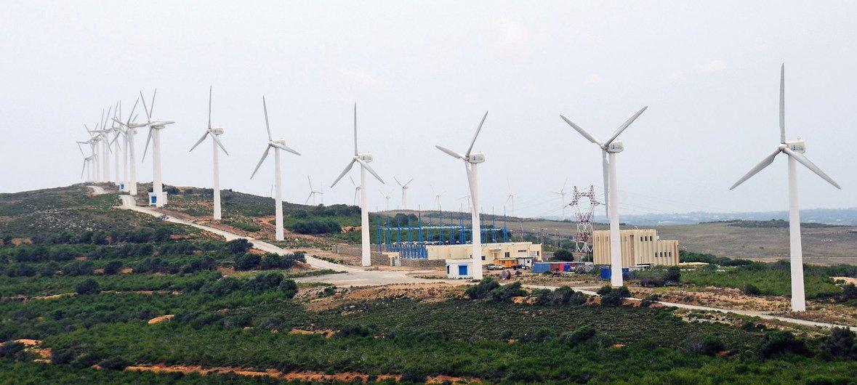 突尼斯的一个风力发电场降低了该国对煤电能源的依赖..