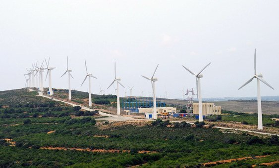 A wind farm in Tunisia generates electricity reducing the country's reliance on coal-powered energy..