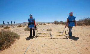 A visual search for landmines takes place in Mehaires, Western Sahara.
