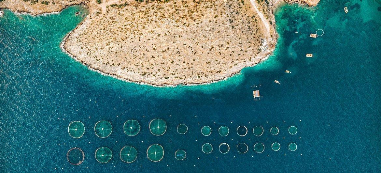 An aerial view of fish farms in Saronikos, Greece.