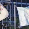 奥林匹克旗帜与联合国旗帜