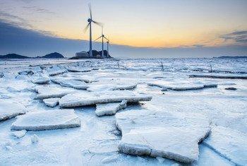 Turbinas eólicas no porto de Tandohang na cidade de Ansan-si, República da Coréia. Ásia pode se tornar o maior mercado do mundo.