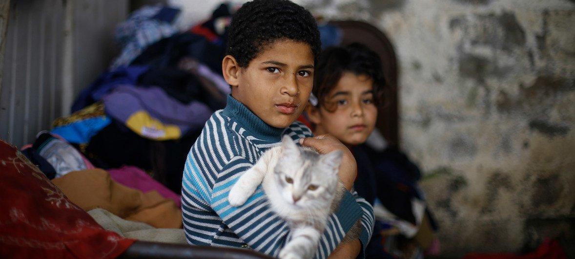 (من الأرشيف) إبراهيم، 10 سنوات، يحمل قطة في منزل أسرته، وهو ملجأ من القصدير في منطقة فقيرة جدا بالقرب من مدينة غزة.
