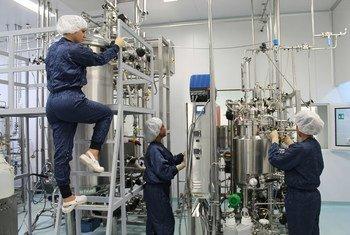 El Instituto Finlay y sus investigadores acumulan décadas de experiencia en la producción de vacunas.
