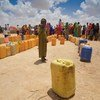 Pessoas deslocadas buscam água na região de Sool, na Somalilândia