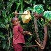 Un niño se lava las manos en Gicumbi, Rwanda.