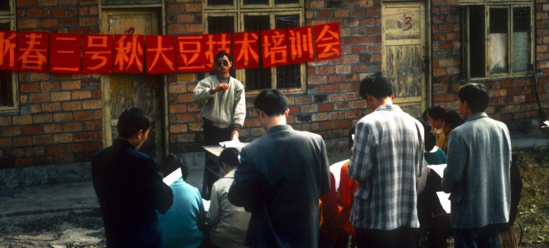 二十世纪八十年代,在四川乐山,一场由联合国粮农组织与当地农业部门共同举办的秋大豆技术培训会正在举行。