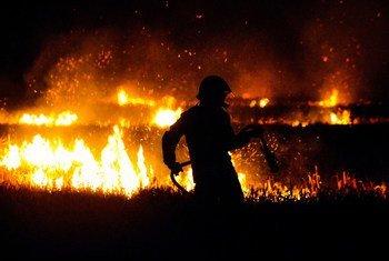 Из-за изменения климата на планете все чаще происходят наводнения, засухи и лесные пожары.