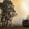Wildfires have broken out across Queensland and New South Wales in Australia.