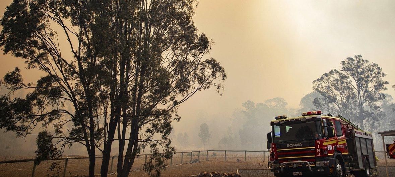 Los incendios forestales se han desatado en Queensland y Nueva Gales del Sur en Australia