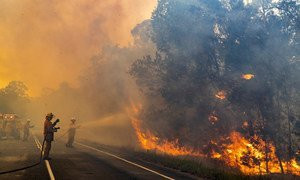 Bomberos en Queensland, Australia, se enfrentan a un incendio que amenaza una población