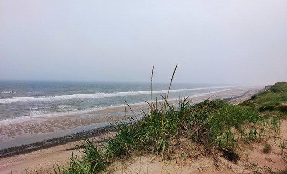 Экспедиция на берег Белого моря продлилась 8 дней