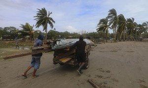 Los residentes de Puerto Cabezas, la principal ciudad de la región del Caribe septentrional de Nicaragua, transportan tablones de madera después del paso del huracán Eta.