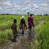 A woman and her family wade through a flooded plain to reach their home in Thaker, Unity state, South Sudan.