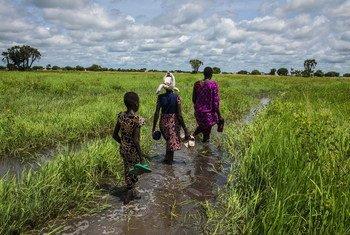 Une femme et sa famille traversent une plaine inondée pour atteindre leur domicile à Thaker, dans l'État de l'Unity, au Soudan du Sud. (archives)