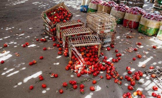 الجمعية العامة في الأمم المتحدة تعتمد قرارات جديدة لإحياء عام للفاكهة والخضراوات ويوما دوليا للشاي ويوما دوليا للتوعية بفقد الطعام وهدره