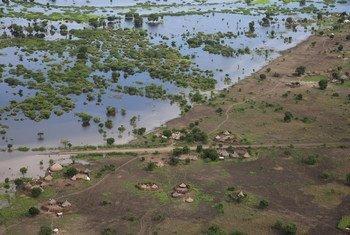 أدت الأمطار الغزيرة  إلى فيضانات مدمرة في جميع أنحاء منطقة جونقلي، ومثلت نكسة أخرى لهذا المجتمع الذي يعاني بالفعل من الفقر.