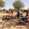 لاجئون يفرّون من العنف الأخير في دارفور بالسودان، يستظلون تحت الأشجار قرب بلدة أدري في تشاد.