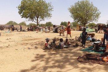Des réfugiés fuyant la région du Darfour au Soudan s'assoient à l'ombre près de la ville d'Adré, au Tchad (archives).