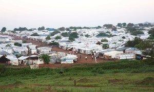 在南苏丹首都朱巴的联合国保护平民区内,确认有人感染了2019冠状病毒。
