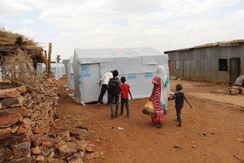 تأثر اللاجئون الإريتريون في منطقة تيغراي بإثيوبيا بشدة بالعنف وانعدام الأمن اللذين اجتاحا المنطقة.