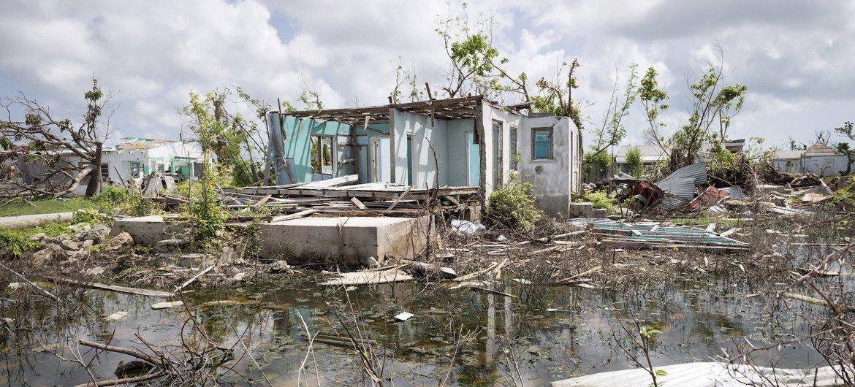 Восстановление после пандемии должно идти рука об руку со сдерживанием климатических изменений, утверждают в ООН.