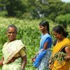 संयुक्त राष्ट्र विकास कार्यक्रम भारत में महिलाओं को आत्मनिर्भर बनाने के लिए अनेक कार्यक्रम व योजनाएं चला रहा है जिनमें कुछ खेतीबाड़ी के क्षे्त्र में भी हैं.