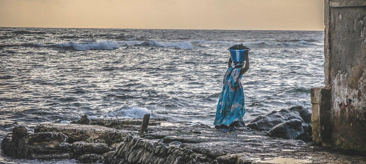 Mulher carrega peixe no Senegal, um dos poucos países com um plano nacional de adaptação climática específico para a pesca
