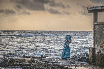 सेनेगल में समुद्री भोजन ले जाती हुई एक महिला.