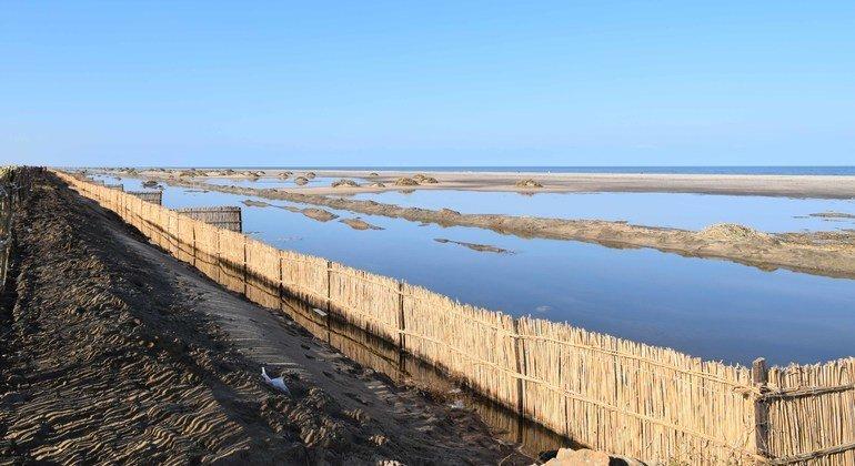 يتم اتخاذ تدابير وقائية على طول الساحل