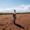 UNICEF is assisting farmers in the recovery of their crops in drought-stricken Madagascar.
