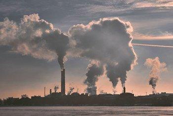 बिजली संयंत्रों से होने वाला वायु प्रदूषण वैश्विक तापमान में वृद्धि करता है.