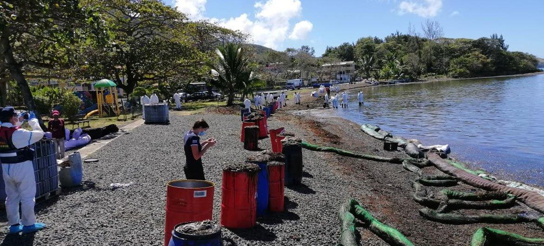 El personal y los expertos de la OIM evalúan el impacto del derrame de petróleo en el Bois des Amourettes, dentro del distrito Grand Port en Mauricio.