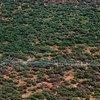 Una operación de fumigación aérea contra las langostas en Kenia.