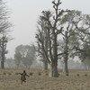 नाइजीरिया के पूर्वोत्तर प्रान्त कैटसीना के एक गाँव में, मैदान में दौड़ता एक बच्चा.