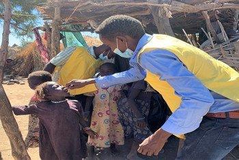 عامل في مجال الصحة في كارا، جنوب جبل مرَّة، يعطي طفلة عمرها 4 سنوات جرعتها من اللقاح ضد شل الأطفال