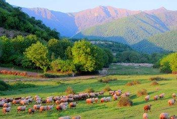 Село Лекит в Гахе, Азербайджан
