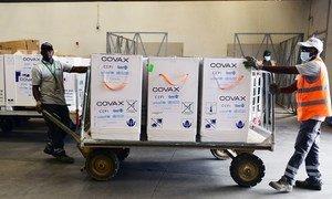 超过35万5000剂由新冠疫苗全球获取机制运送的疫苗抵达尼日尔首都尼亚美。